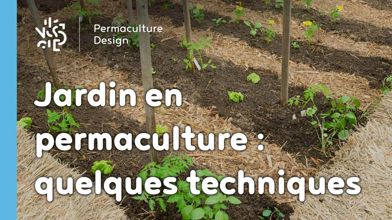 video d 39 un jardin potager en permaculture. Black Bedroom Furniture Sets. Home Design Ideas