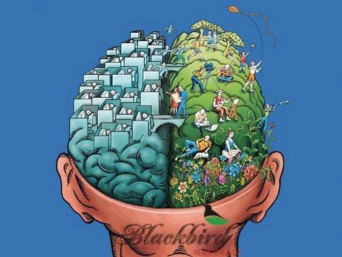 Cerveau gauche et cerveau droit, retrouvons notre équilibre et notre créativité