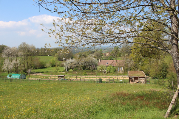 ferme-permaculture-2