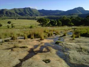 Choisir un terrain permaculture-4