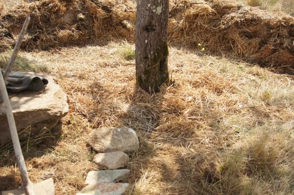 L'arrivée finale de la filière. Les eaux non infiltrées jusqu'ici, termineront leur parcours dans un dernier bassin de mulch et d'infiltration, fournisseur régulier de compost et d'une irrigation précieuse pour un pommier central et butte cultivée en aval.
