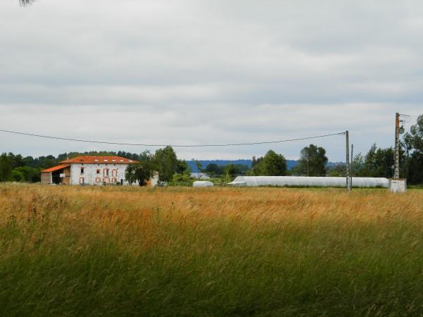 Formation permaculture Saverdun 4