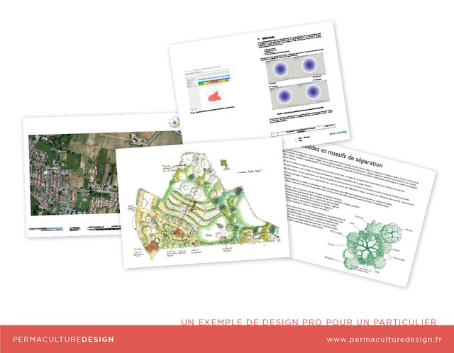 Design Permaculture professionnel 2