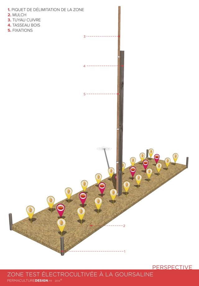 Electroculture Principe test_2