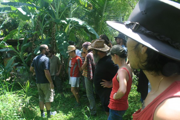 Formation-permaculture-reunion-1