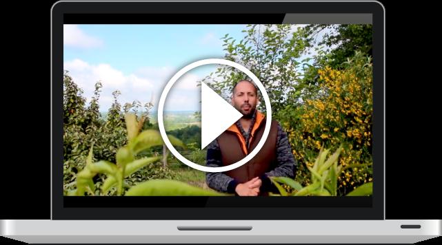 Formation gratuite en vidéo et français de permaculture
