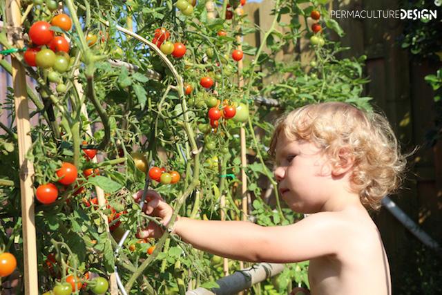 Comment faire d couvrir la permaculture aux enfants - Comment faire fuire les taupes dans le jardin ...