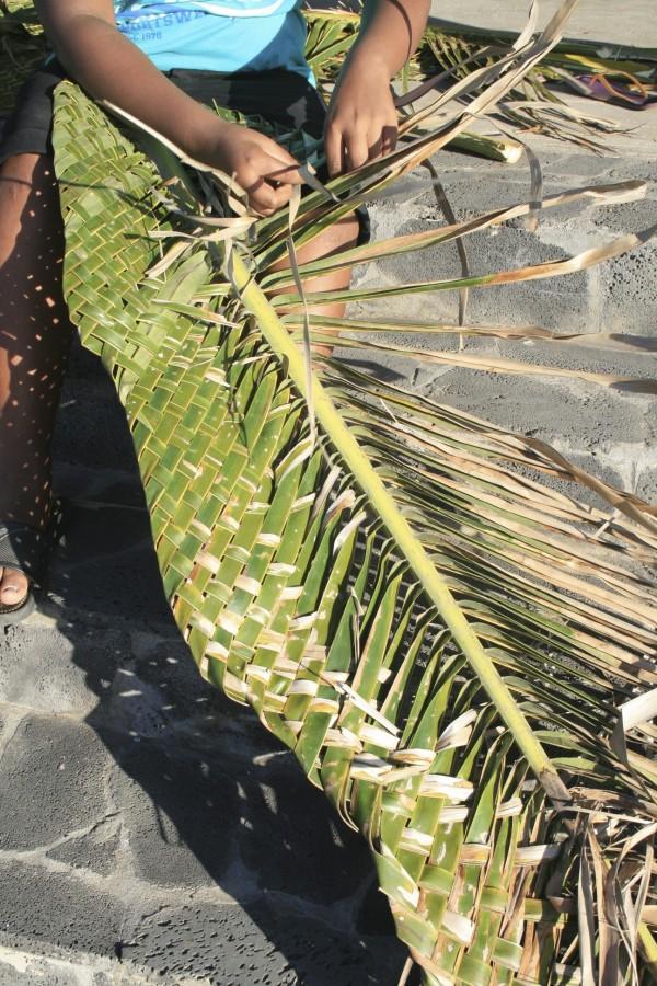 La permaculture en milieu tropical : le tressage d'une feuille de cocotier