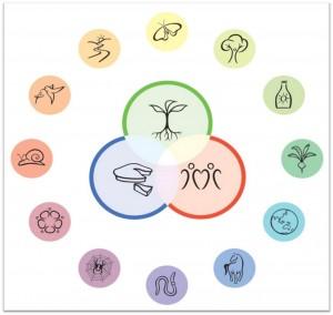 permaculture-ethique-principes1