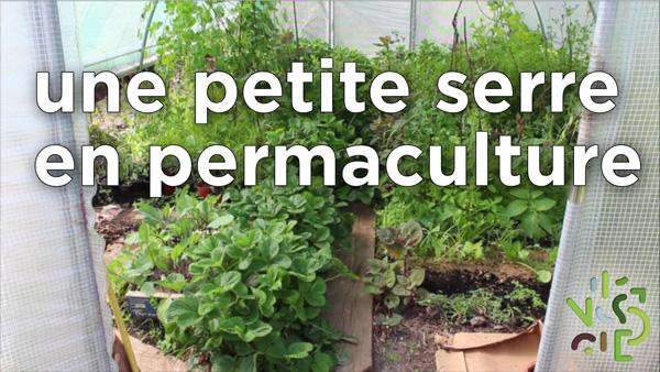 Aménagement d'une serre selon les principes de permaculture.