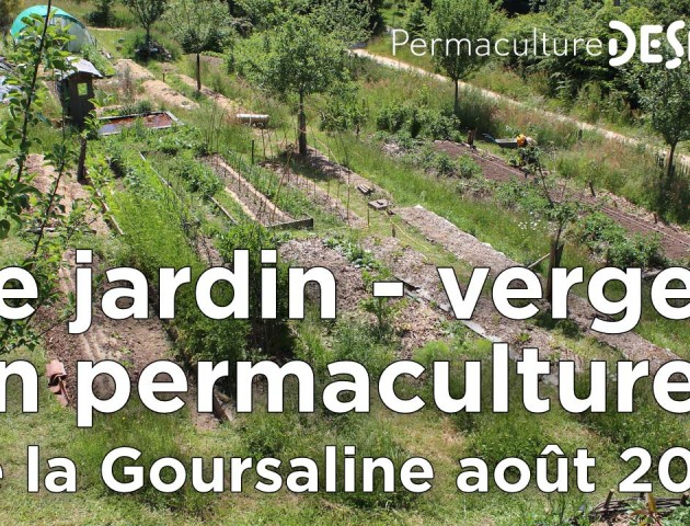 Le jardin potager verger en permaculture for Permaculture en pratique