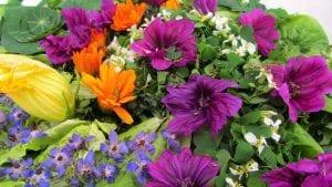 Salade de plantes et fleurs sauvages comestibles