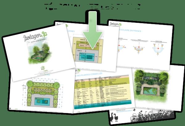 potager-permanent-facile-permaculture-design-7