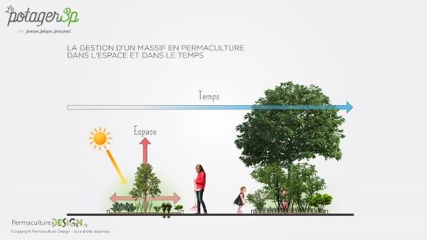 potager-permanent-facile-permaculture-design-9