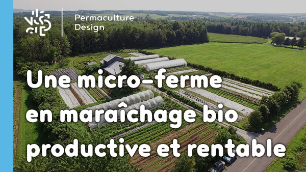 Une micro-ferme en maraîchage biologique, productive, rentable à travers un film documentaire.