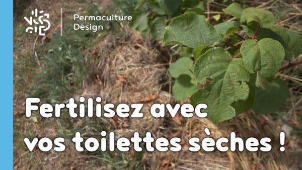 Essai sur l'utilisation de nos résidus de toilettes sèches pour fertiliser un arbre fruitier