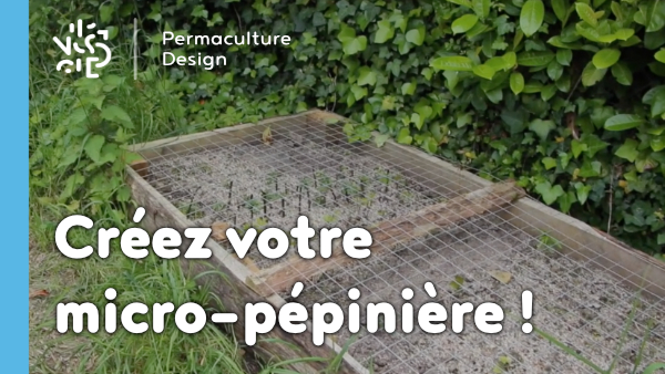 micro-pepiniere-propagation-multiplication-permaculture-design-01_600px