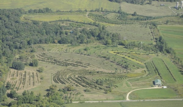 regeneration-agriculture-agroforesterie-mark-shepard-permaculture-design-05_600px