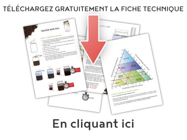 ft003_illus_contenu-de-la-fiche_telechargement_direct