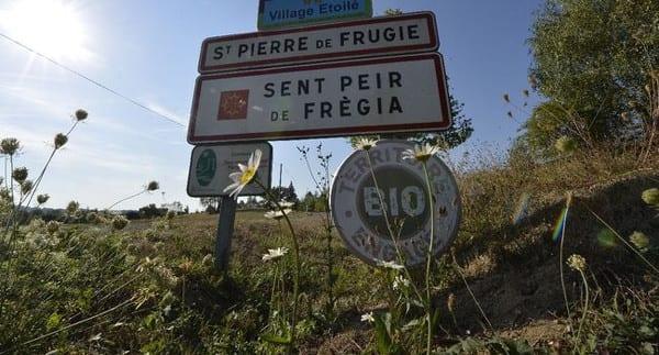 formation-permaculture-saint-pierre-3