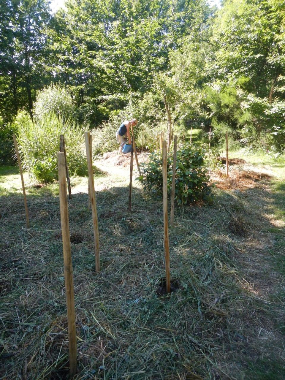 cours-certifie-de-design-en-permaculture-84h-27-