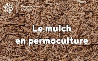 Le mulch en permaculture