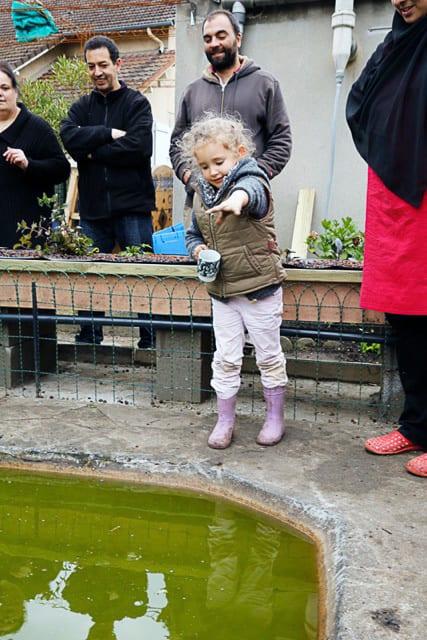 Enfant devant bassin aquaponie