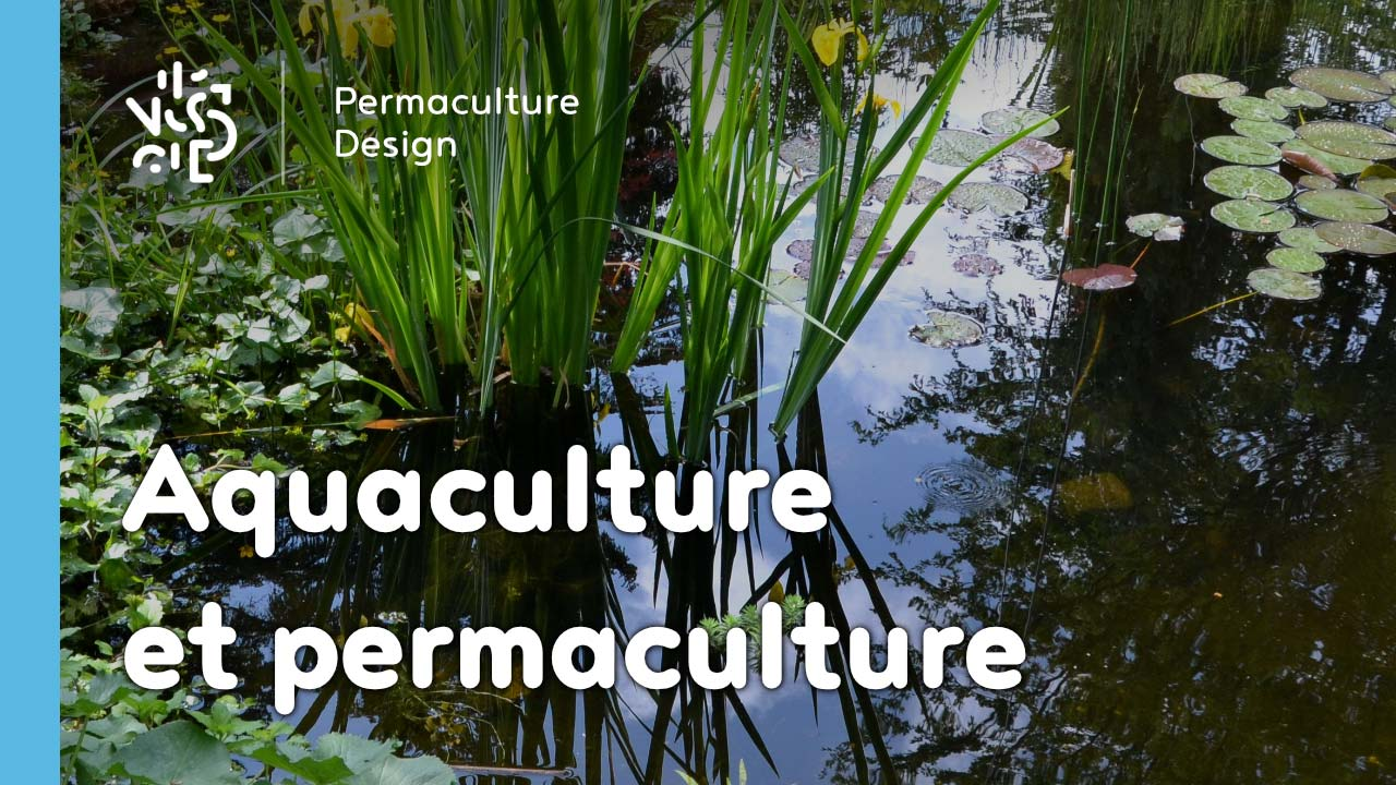 permaculture et aquaculture. Black Bedroom Furniture Sets. Home Design Ideas