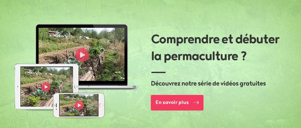 Comprendre et débuter la permaculture ?