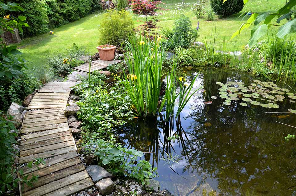 recuperer-eau-pluie-stockage-permaculture-design-originale3