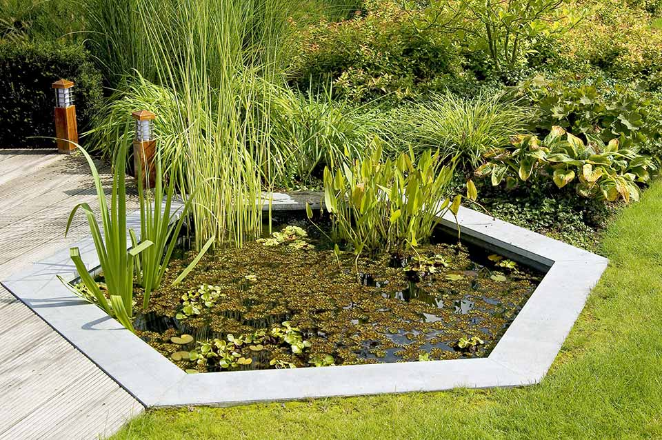 recuperer-eau-pluie-stockage-permaculture-design-originale5
