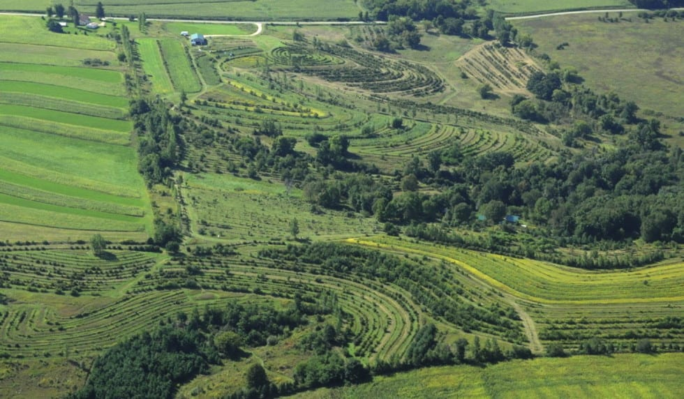 regeneration-agriculture-agroforesterie-mark-shepard-permaculture-design-10