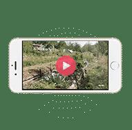 iPhone montrant une vidéo de formation en ligne