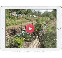 iPad montrant une vidéo de formation en ligne