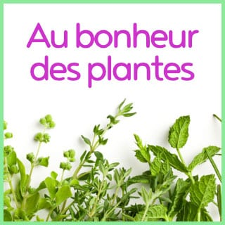 Invitez la permaculture dans votre jardin