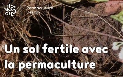 la gestion du sol en permaculture permaculture design. Black Bedroom Furniture Sets. Home Design Ideas