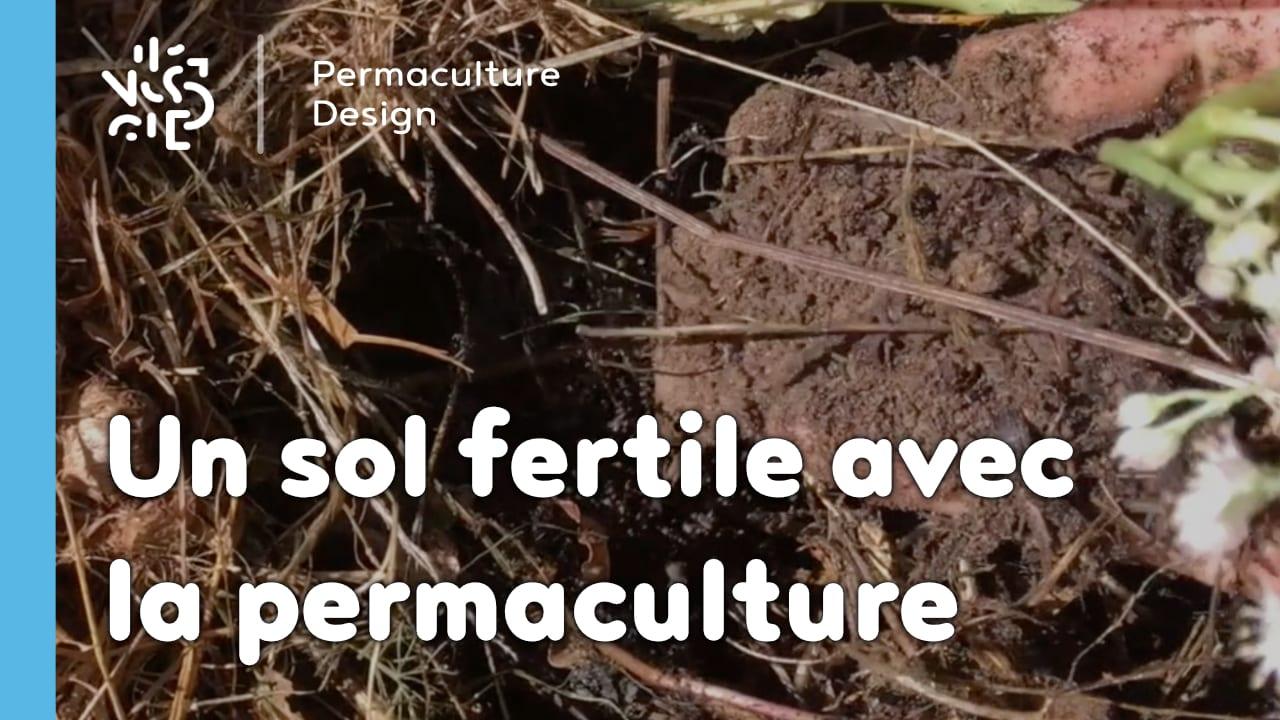 Comment avoir un sol fertile avec la permaculture : les bases