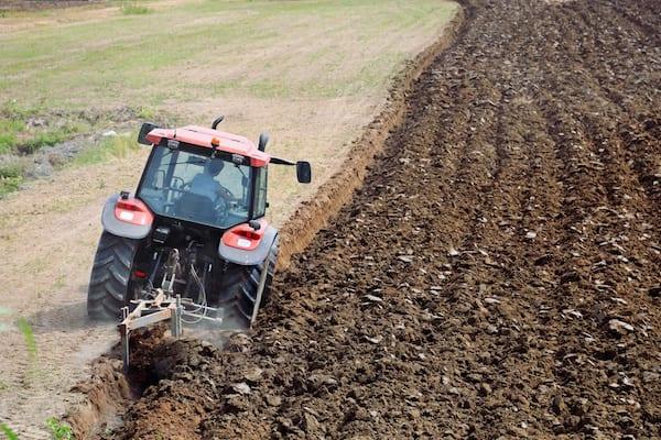 La permaculture s'inspire des modèles naturels pour créer un sol fertile et vivant.