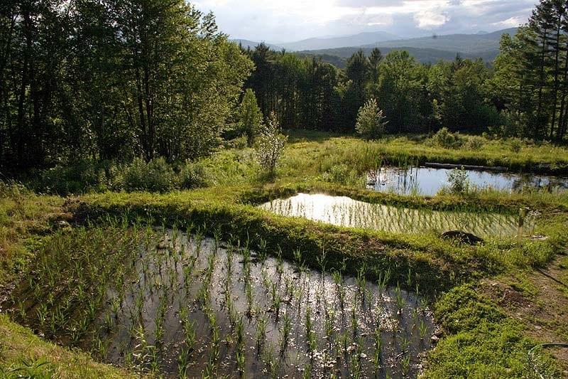 Choisir-un-terrain-pour-votre-projet-permaculture - les-10-points essentiels-permaculture-design-03