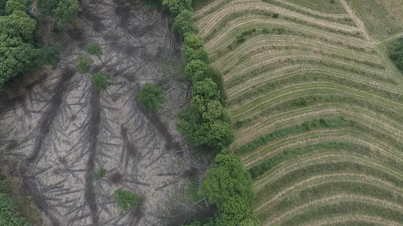 Choisir-un-terrain-pour-votre-projet-permaculture - les-10-points-essentiels-permaculturedesign_02