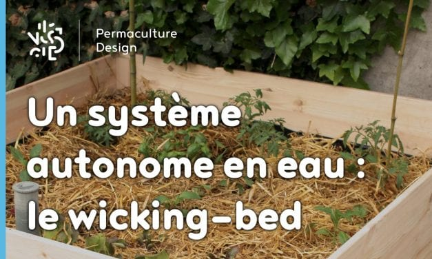 permaculture urbaine permaculture design. Black Bedroom Furniture Sets. Home Design Ideas
