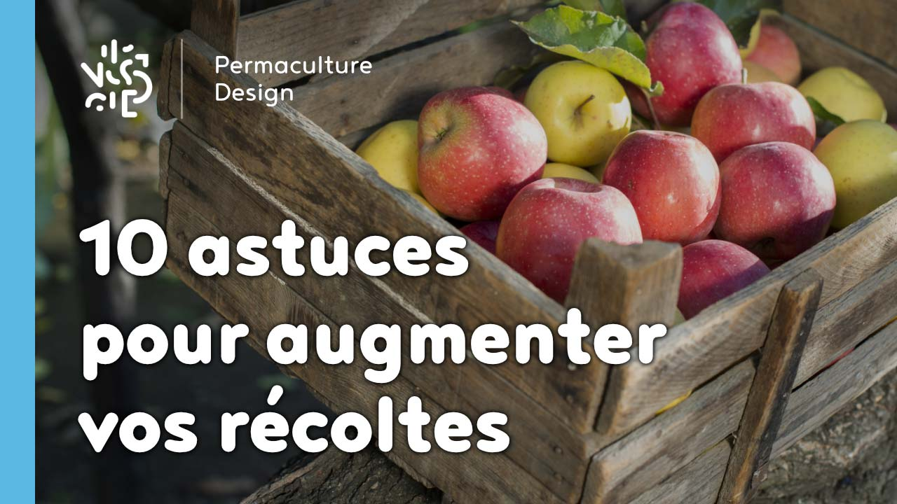 10 astuces pour augmenter vos récoltes…