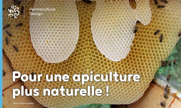 Pour le retour à une apiculture naturelle…