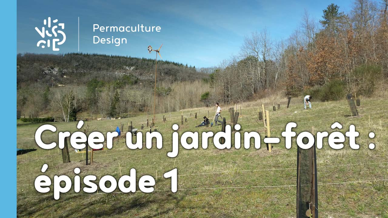 cr er un jardin for t en permaculture pisode 1. Black Bedroom Furniture Sets. Home Design Ideas