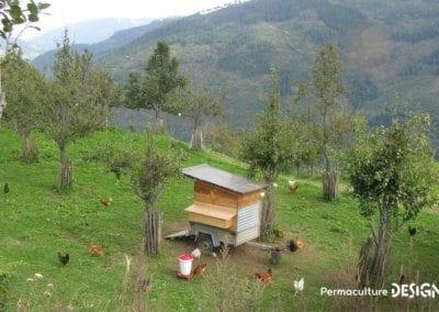 ferme-Sepp-Holzer-formation-permaculture-design_04