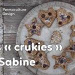 Les « crukies » : une recette de cookies crus gourmands, sains et équilibrés