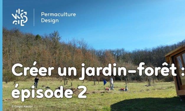 Créer collectivement un jardin-forêt en permaculture : épisode 2, les premières plantations