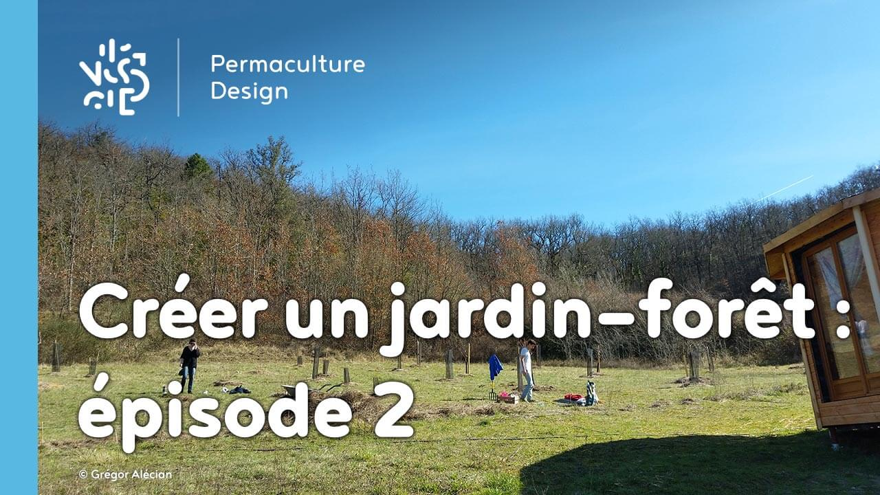 cr er un jardin for t en permaculture pisode 2