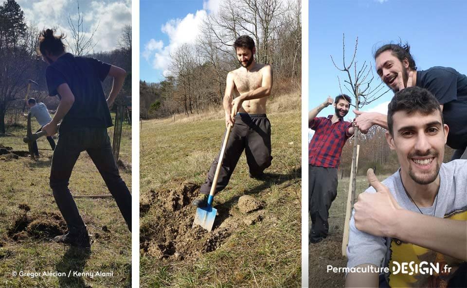 Suivi de la création d'un jardin forêt comestible en permaculture.
