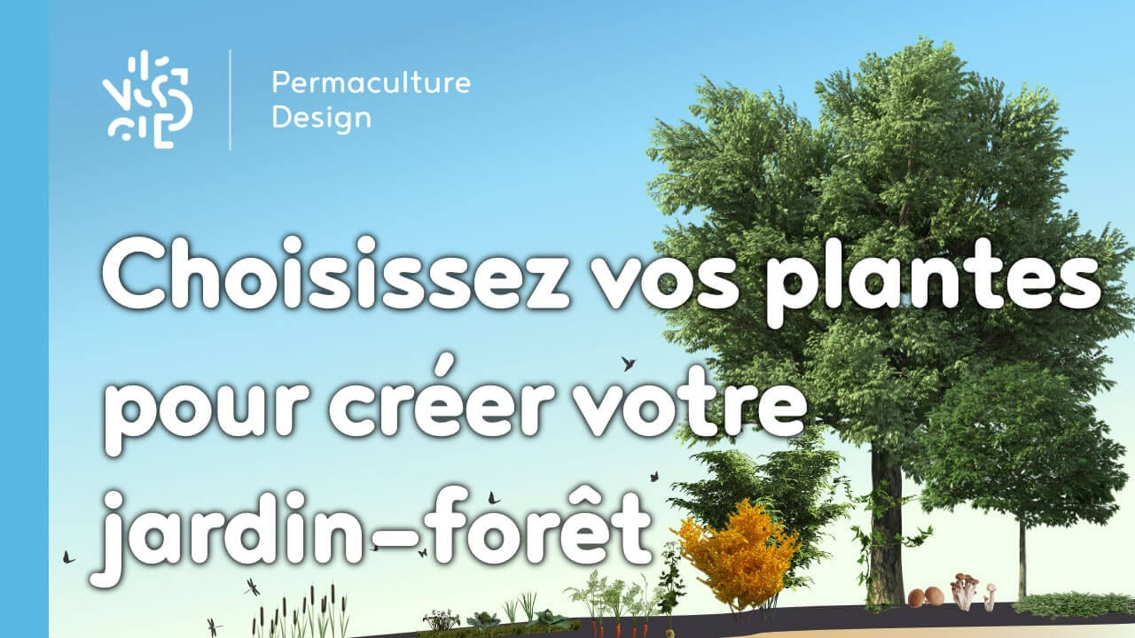 Creer son jardin en ligne conception d 39 une terrasse for Creer son jardin